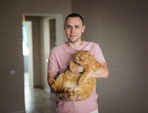 Fat or Fluffy—Preventing Pet Obesity